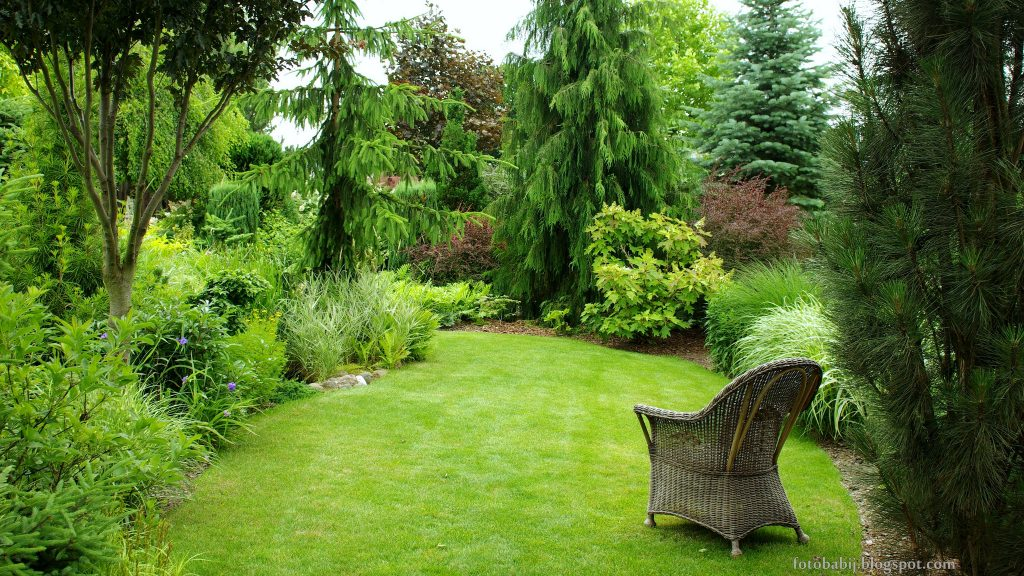 Green and lush garden with freshly cut grass surrounded by bushes and trees.