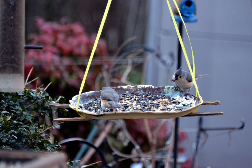 Bird feeder in a garden with two birds eating seeds.
