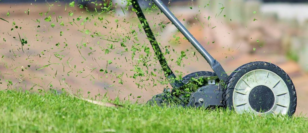 lawn-mowing-grass